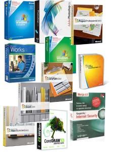 programy big 225x300 Systemy operacyjne i oprogramowanie systemowe